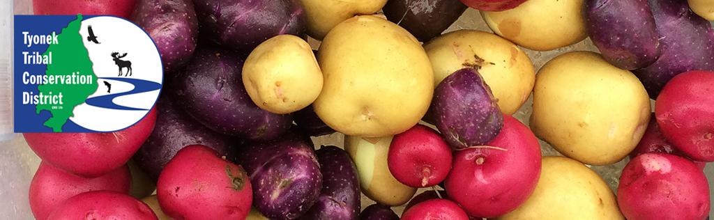 Potato Website Header